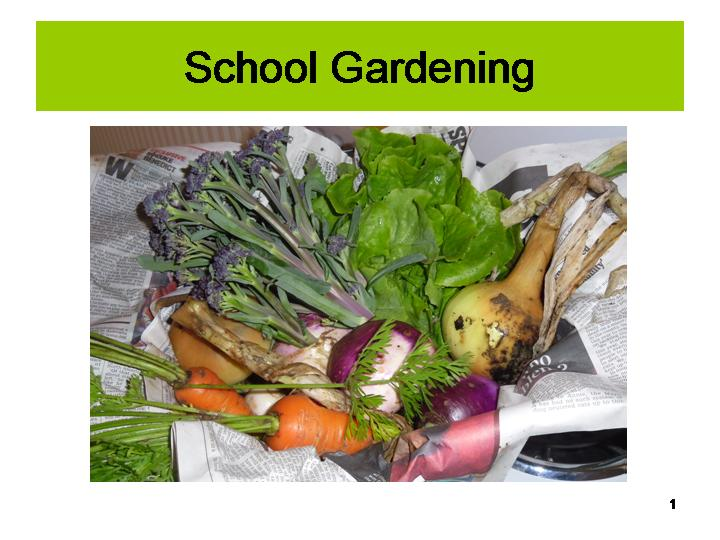 Dingle School garden slideshow